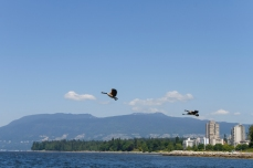 022 2014.06.01 Vancouver