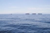 029 2014.06.03 Strait of Georgia