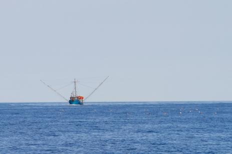 043 2014.06.11 Hecate Strait