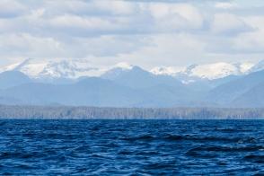 121 2014.06.10 Hecate Strait