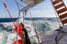165 2014.06.12 Hecate Strait